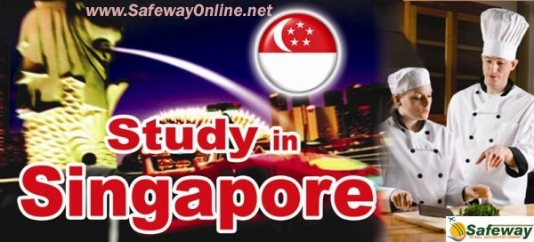 Study in Singapore, Guidance & Advice